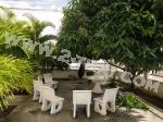 Pattaya Tropical