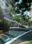Del Mare Bang Saray Beachfront Condominium Pattaya 11