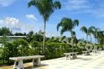 Pattaya Tropical 3